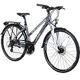 Whistle 28 Zoll Trekkingrad Crossrad Damenrad 24...